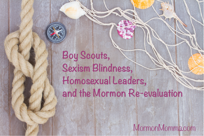 BSA Homosexual Leaders Sexism