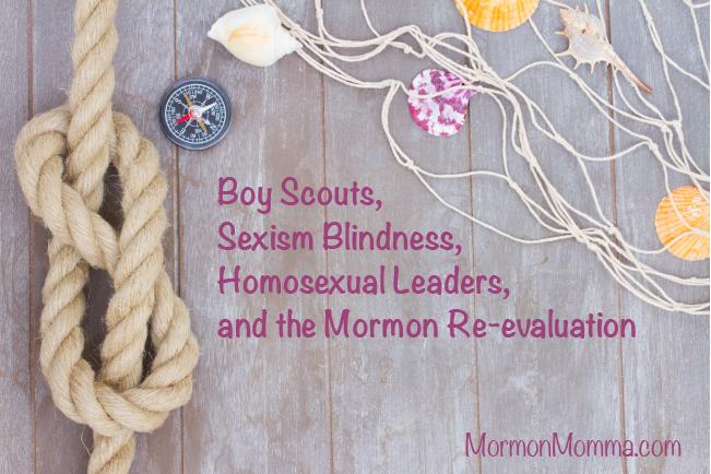 BSA Homosexual Leaders Sexism